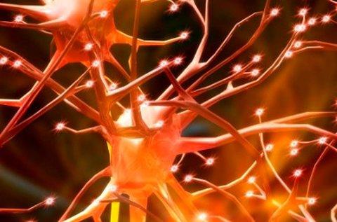 Szakorvosi neurológiai kivizsgálás