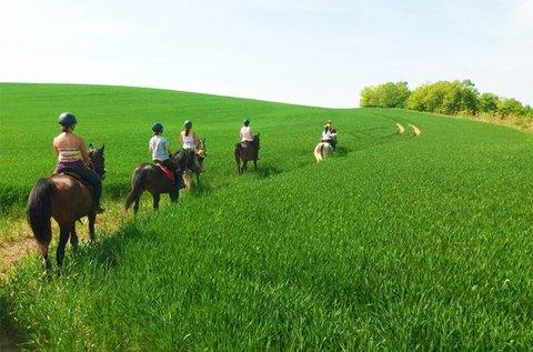 Futószáras lovasoktatás vagy erdei élménylovaglás