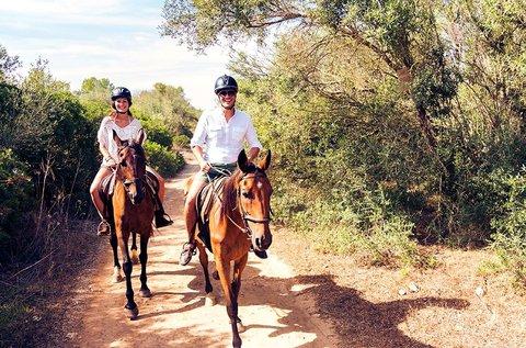 25 perces futószáras lovasoktatás kezdőknek