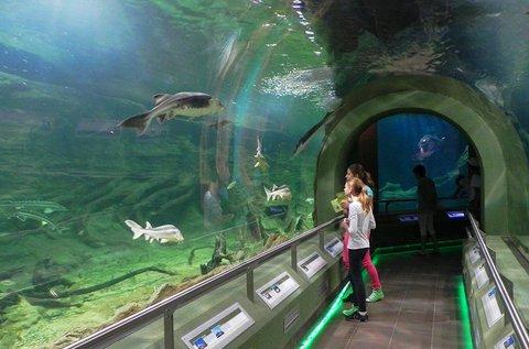 Buszos kirándulás a poroszlói Ökocentrumhoz