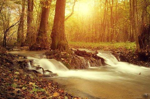 Természetközeli őszi élmények Szilvásváradon