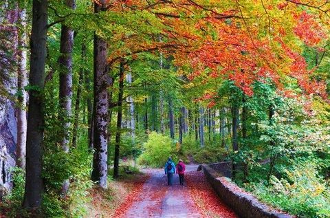 Hangulatos őszi pihenés a Mátrában, Parádfürdőn