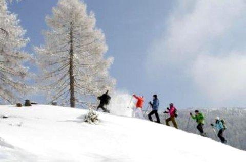 1 hetes téli lazítás éjszakai szánkózással Karintiában