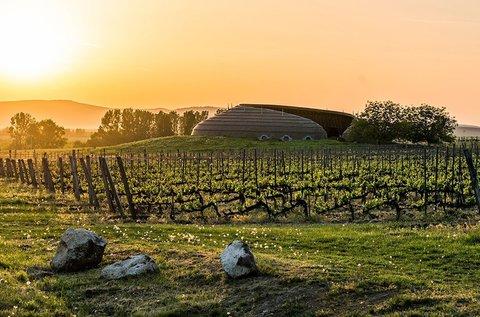 Év végi lazítás borkóstolóval a Tokaji borvidéken