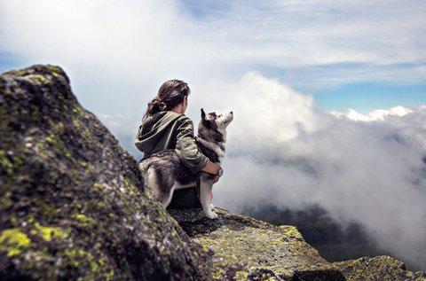 Kutyás túra Noszvajról a Bükk-hegységbe