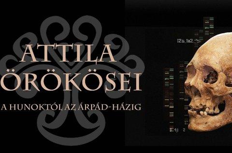 Nézd meg az Attila örökösei című időszaki kiállítást!