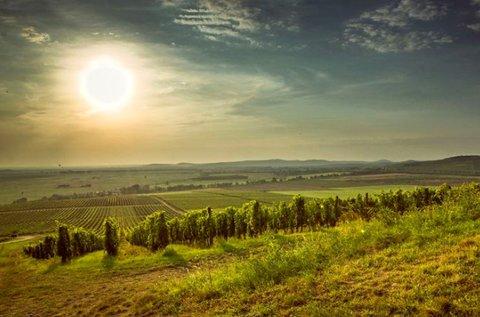 3 napos téli feltöltődés borkóstolóval Tokajban