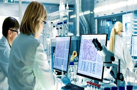 Menedzserszűrés laboratóriumi vizsgálat