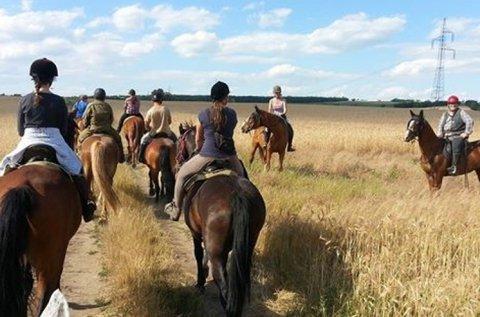 Futószáras lovaglás a Naplási-tó közelében