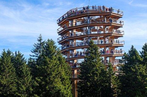 Buszos utazás a szlovéniai lombkorona toronyhoz