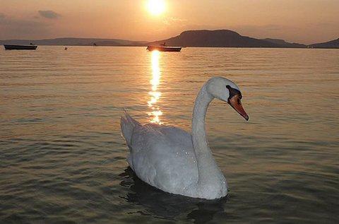 5 napos elő- vagy utószezon a Balaton-parton