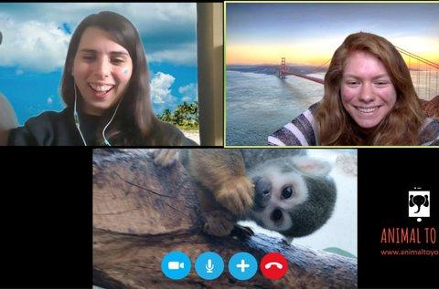 Meglepetés videohívás egy egzotikus állattal
