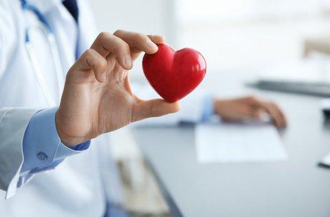 Kardiológiai vizsgálat szívultrahanggal