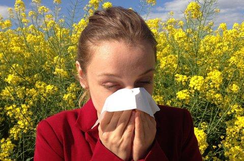 Allergia és ételérzékenység vizsgálat