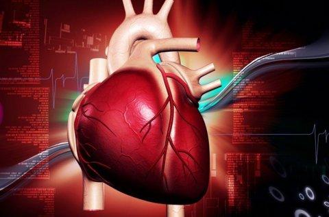 Komplex szív és agyi-érrendszeri felmérés
