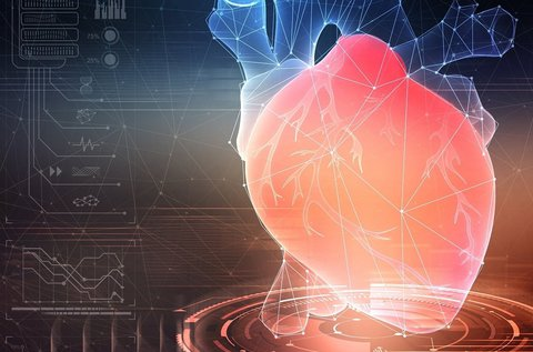 Kardiológiai szakorvosi vizsgálat szívultrahanggal