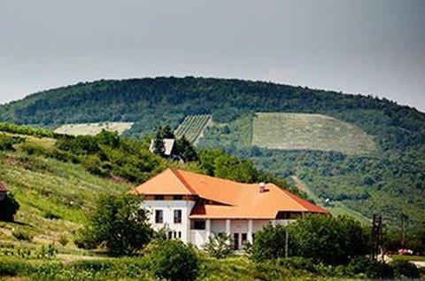 All inclusive disznótoros hétvége a Tokaji borvidéken