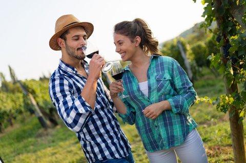 Villányi hétvége ínyenc borvacsorával és bortúrával