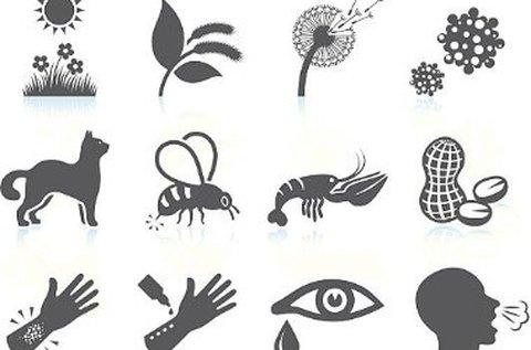 Allergiavizsgálat 400 féle allergénre + Candida-teszt