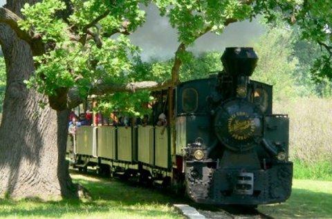 Buszos kalandozás erdei vasutazással Somogyban