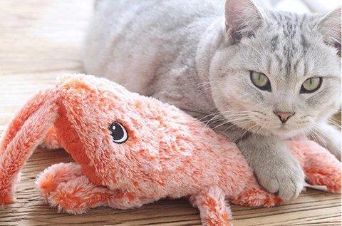 Ficánkoló rák interaktív cica- és kutyajáték