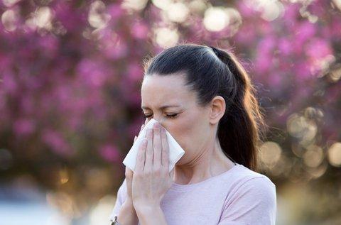Átfogó allergiavizsgálat elektroakupunktúrával