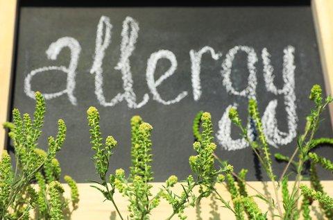 Allergia-, ételérzékenység és Candida vizsgálat