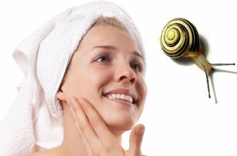 Csiganyálkás arcmegújító luxus kezelés