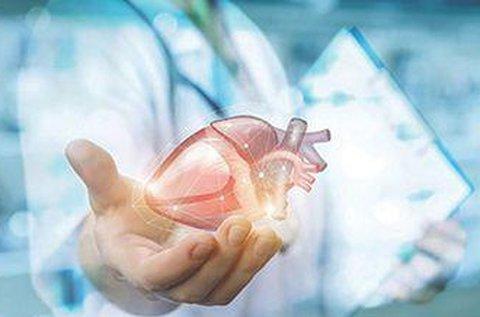 Általános kardiológiai kivizsgálás szívultrahanggal