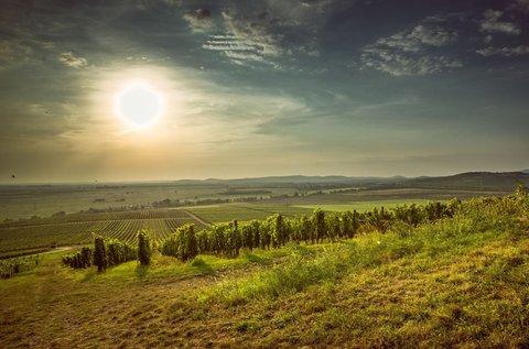Őszi lazítás borvacsorával a mesés Tokaj-Hegyalján