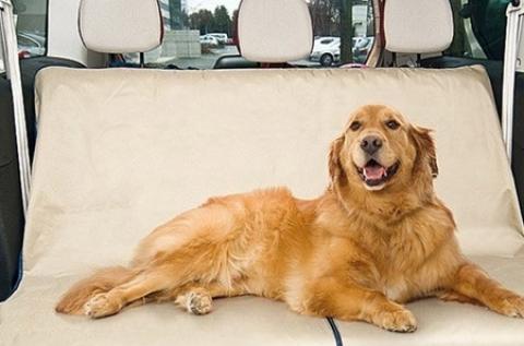 Kutya- és macskabarát ülésvédő autóba