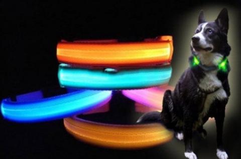 LED kutyanyakörv több méretben és színben