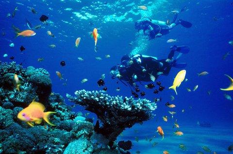4 nap kikapcsolódás a Vörös-tenger partján