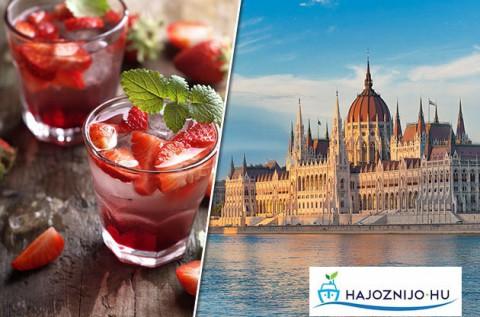 Budapesti sétahajózás 1 pohár üdvözlőitallal