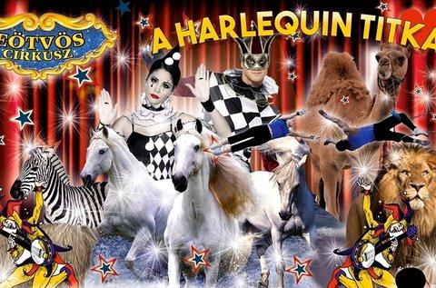 Belépő A Harlequin titka című cirkuszi előadásra