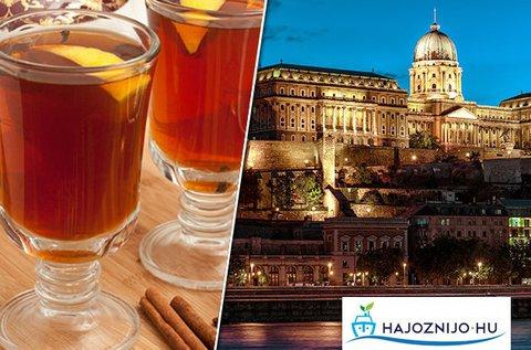 1 órás sétahajózás a Dunán forró welcome drinkkel