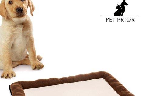 Pet Prior kutyaágy