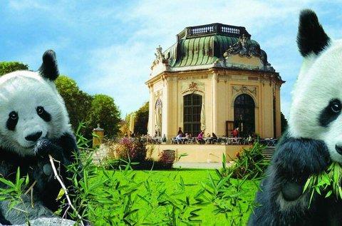 Gyermeknapi buszos kirándulás Bécsbe