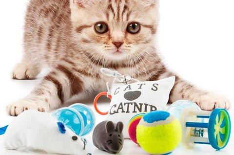 8 részes macskajáték csomag