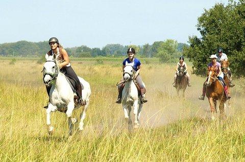 2 órás tereplovaglás gyakorlott lovasoknak