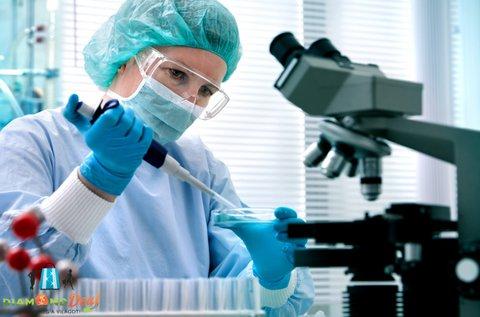 Élő vércseppanalízis orvosi szakvéleménnyel