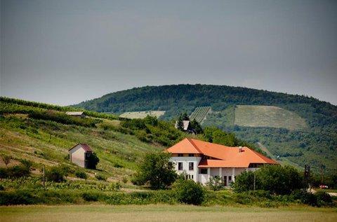3 napos borkóstolós lazítás Tokaj-Hegyalján