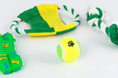 Kutyajáték készlet labdával, csipogó gumicsonttal