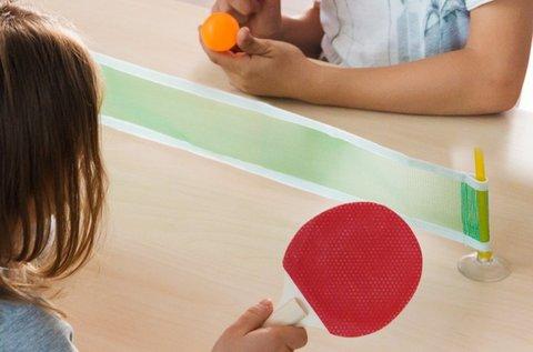 Mini ping-pong játék hálóval