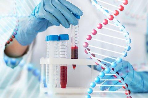 Élő vércseppanalízis ételallergia-teszttel