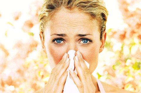 Allergia gyorsteszt vércseppvitalitás méréssel