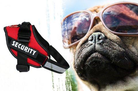 Strapabíró, biztonságos K9-es kutyahám