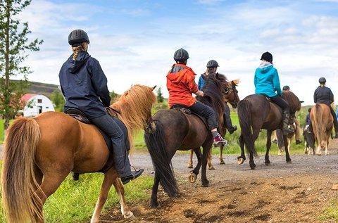 1 hetes élményekkel teli nyári lovastábor Oszkón