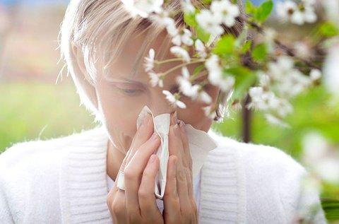 Vérből történő vegyes allergia vizsgálat