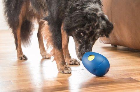 Interaktív jutalomfalattal tölthető kutyajáték